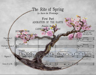 Picture:; Sakura Cherry Blossom with sheet music imposed over image