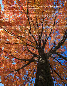 Picture: Upward perspective of tree with colorful autumn leaves, with sheet music imposed over image